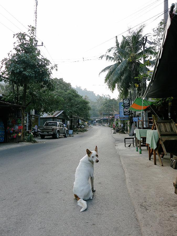 Thailand-012314-20140123-IMG-1178-00067.jpg